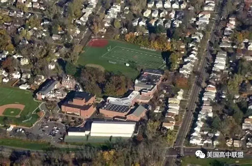 威尔林学校.webp.jpg