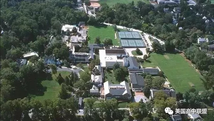 布林莫尔学院